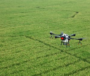 about alpha drone in field